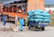 Ngành giao thông nỗ lực đảm bảo lưu thông tiêu thụ nông sản