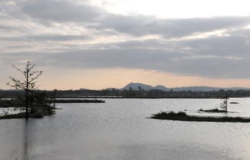 Đắk Lắk chấp thuận việc khảo sát, lập dự án điện mặt trời trên hồ Ea Súp Hạ