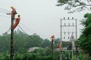 Điện lực Phú Thọ chủ động ứng phó với áp thấp nhiệt đới