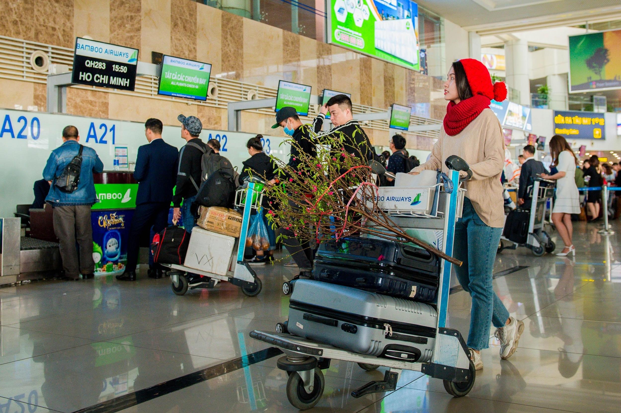 Bamboo Airways vận chuyển cành đào, mai dịp Tết Tân Sửu 2021