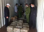 Hơn nửa tấn cần sa giấu trong container ở Khu công nghiệp Đình Vũ