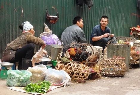 Người dân thờ ơ với cúm A/H7N9