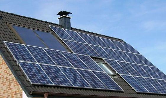 Tạo pin năng lượng mặt trời từ củ nghệ, dâu tây và lá mâm xôi