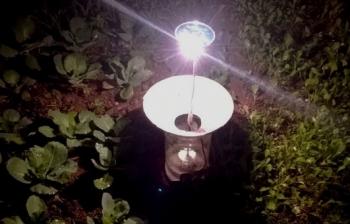 Bẫy côn trùng bằng đèn năng lượng mặt trời