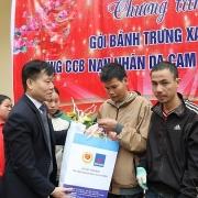 Năm hành động vì nạn nhân chất độc da cam/dioxin Việt Nam