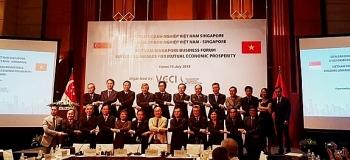 Ra mắt Hội đồng Doanh nghiệp Việt Nam - Singapore
