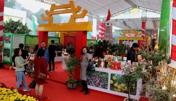 hon 300 gian hang tham gia festival san pham nong nghiep va lang nghe ha noi