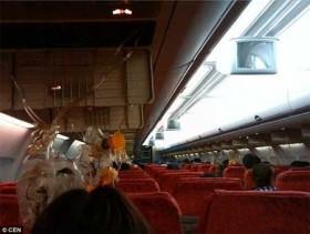 Máy bay Thái Lan hỏng động cơ giữa không trung, hành khách trào máu tai