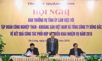 TKV và TCT Đông Bắc tiếp tục khẳng định là đơn vị kinh tế chủ lực