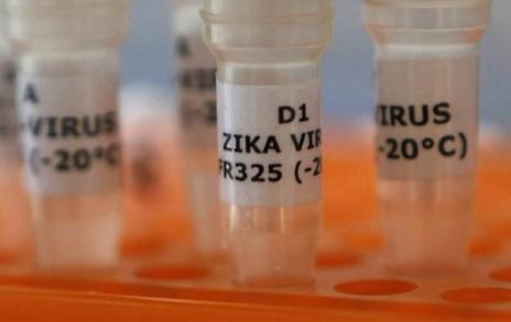 bac thong tin virus zika lan den viet nam