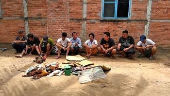 cong an triet pha truong ga bat 9 con bac cung tang vat