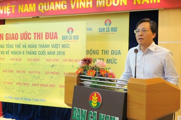 pvcfc phat dong thi dua 6 thang cuoi nam 2016