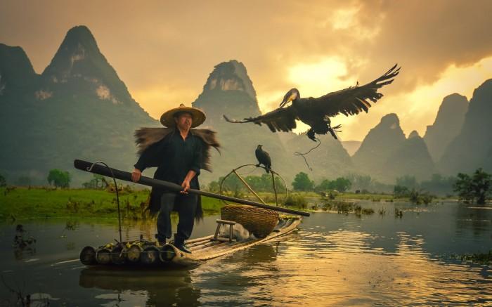 Hình ảnh tuyệt đẹp về người ngư dân đánh cá bằng chim cốc