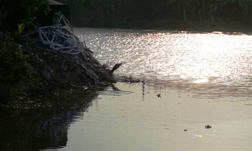 Đánh cá, hai vợ chồng tử vong vì đuối nước