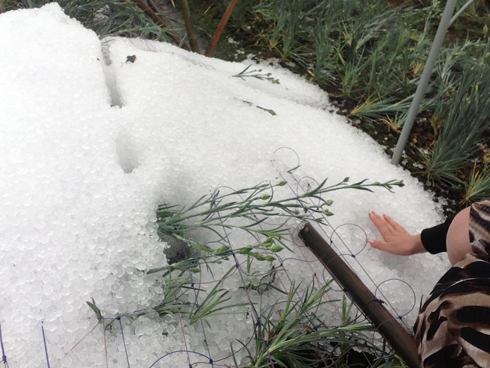 Hình ảnh về trận mưa đá lớn chưa từng có ở Đà Lạt