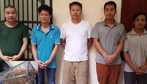 ha noi khoi to 5 doi tuong buon ban dong vat hoang da