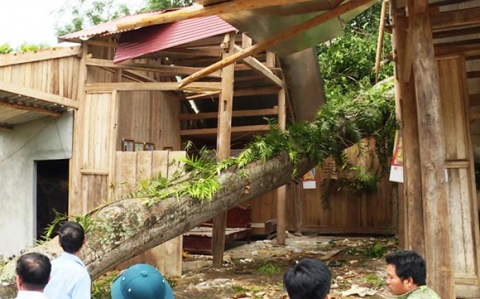 Lào Cai: Dông lốc, sét đánh khiến 5 người thương vong