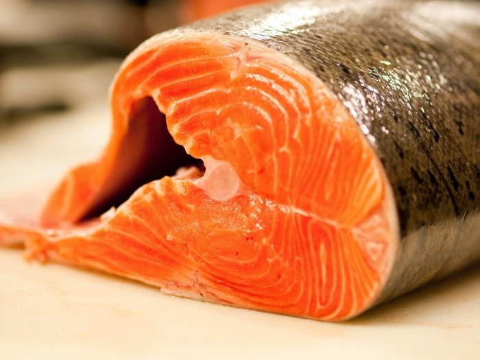Kết quả hình ảnh cho các loại cá béo