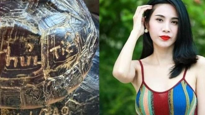 """""""Gia đình Thủy Tiên khắc tên lên mai rùa để phóng sinh"""" gây tranh cãi trên mạng xã hội"""