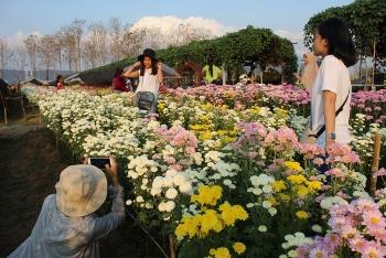 thai lan ron rang le hoi hoa cuc da sac mau