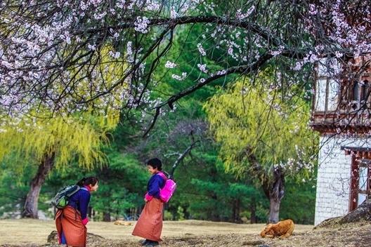 Bhutan giống như xứ sở thần tiên qua lời kể của du khách Việt