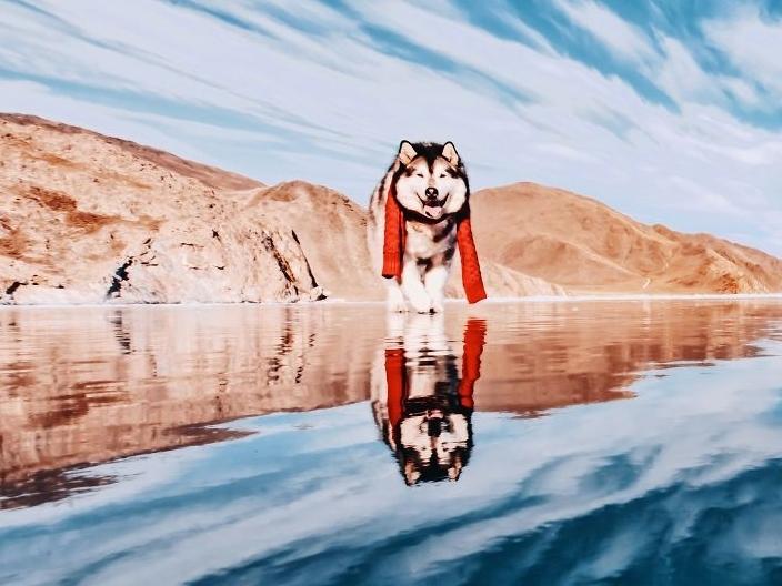 Khoảnh khắc đẹp như cõi thần tiên tại hồ băng lâu đời nhất hành tinh