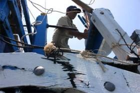 Yêu cầu Trung Quốc xử lý nghiêm khắc vụ đâm vào tàu cá Việt Nam
