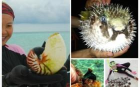 Phản đối du khách Trung Quốc tàn phá sinh vật biển ở Hoàng Sa của Việt Nam