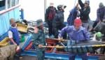 Hơn 90% tàu đánh bắt cá ngừ không hoạt động