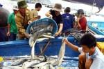 Phê duyệt Quy hoạch phát triển thủy sản đến 2020