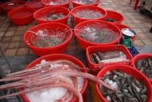 Đà Nẵng công bố 49 điểm bán hải sản sạch