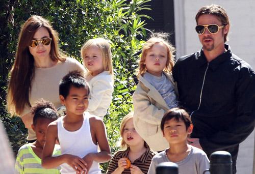 Nếu ngoại tình, Brad Pitt sẽ không còn con cái