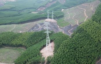 Vướng thủ tục chuyển đổi đất rừng, nhiều dự án truyền tải điện phải kéo dài