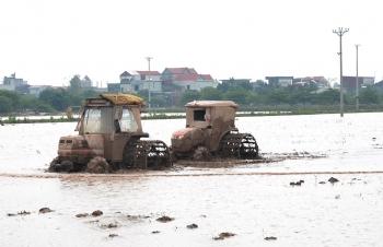 Các hồ thủy điện xả 4,17 tỷ m3, hơn 82% diện tích gieo cấy vụ Đông Xuân có nước