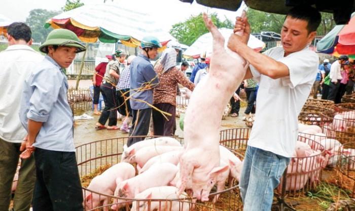 Việt Nam chưa được xuất khẩu sản phẩm thịt sang Trung Quốc