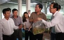 Bộ trưởng Phát hỏa tốc trả lời Bí thư Thăng vụ giấy phép chậm 10 năm