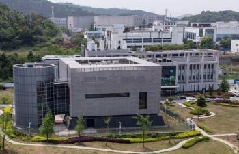 Chuyên gia: Cần điều tra quốc tế về nguồn gốc nCoV