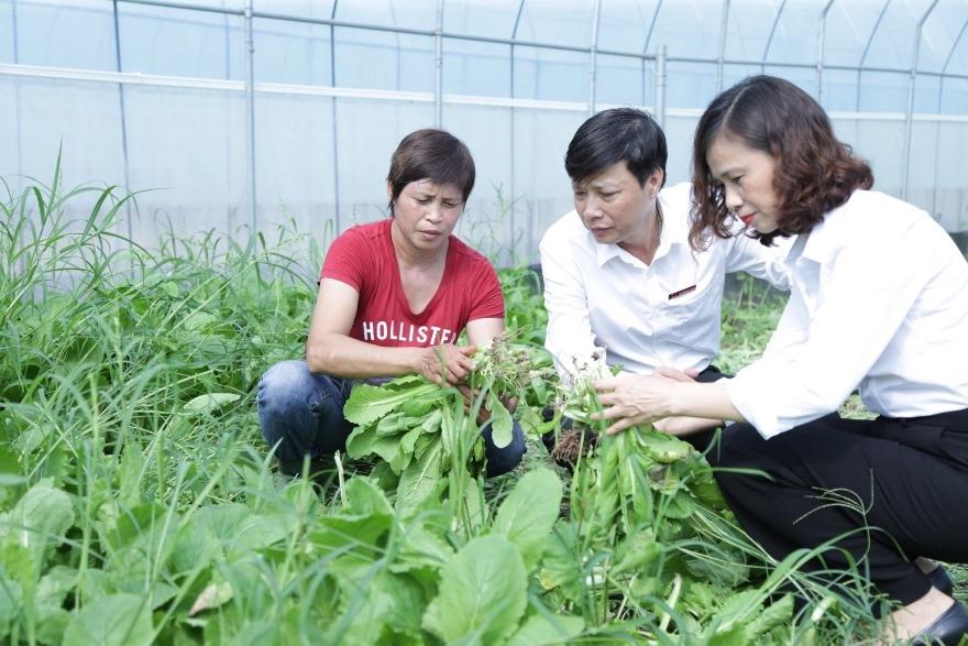 Agribank tiếp sức dòng vốn cho phát triển kinh tế Thủ đô