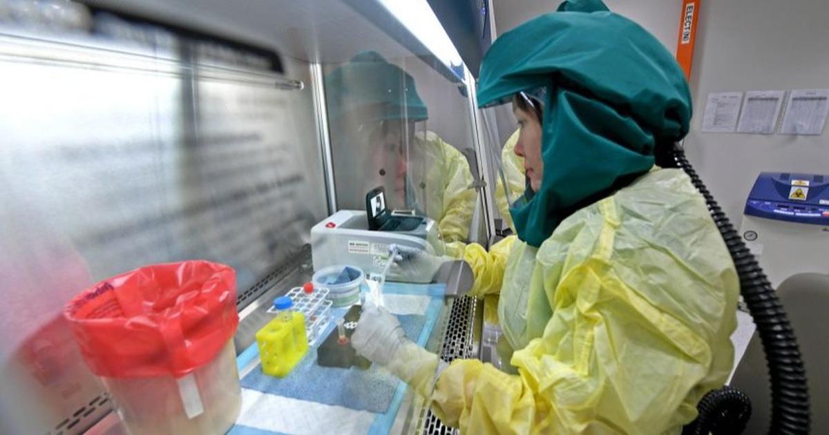 Virus SARS-CoV-2 đã biến đổi hơn 6.600 lần