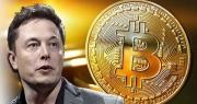 Giá Bitcoin lao dốc khi Elon Musk bất ngờ quay lưng