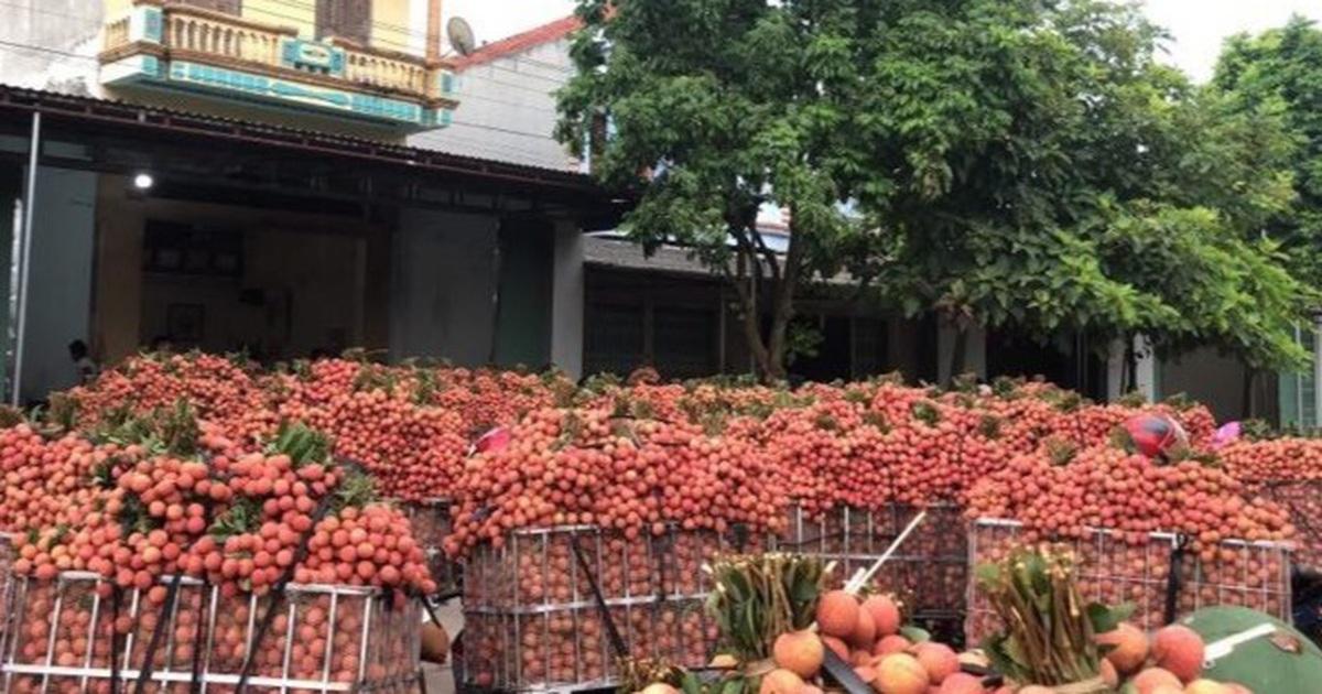 """Hàng chục nghìn tấn nông sản ở """"điểm nóng"""" Bắc Giang mòn mỏi chờ """"giải cứu"""""""