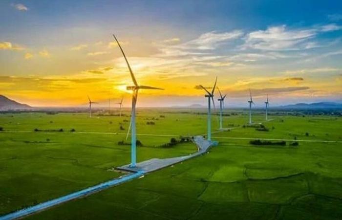 ADB cam khoản vay 116 triệu USD cho 3 dự án điện gió