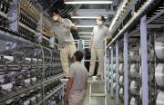Sắp hết hạn điều tra bán phá giá sợi của Việt Nam vào Hoa Kỳ