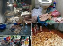 Người Việt đang hại nhau vì tiền!
