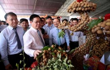 khong duoc de 1 can nhan nao cua ba con phai ban re so voi gia tri thuc