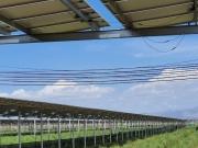 Nhiều địa phương 'tuýt còi' trang trại làm điện mặt trời mái nhà
