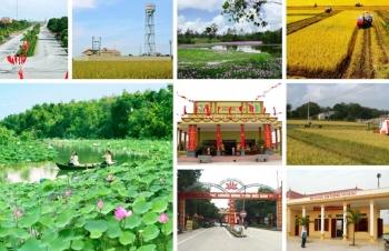 Chương trình OCOP – Giải pháp phát triển kinh tế nông thôn và xây dựng nông thôn mới hiệu quả