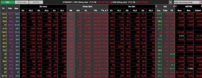 Cơn bão bán tháo càn quét, rủi ro cháy tài khoản vì cổ phiếu nóng - 2