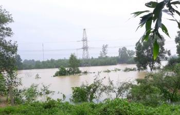 Lưới điện truyền tải miền Trung vững vàng trong mưa lũ