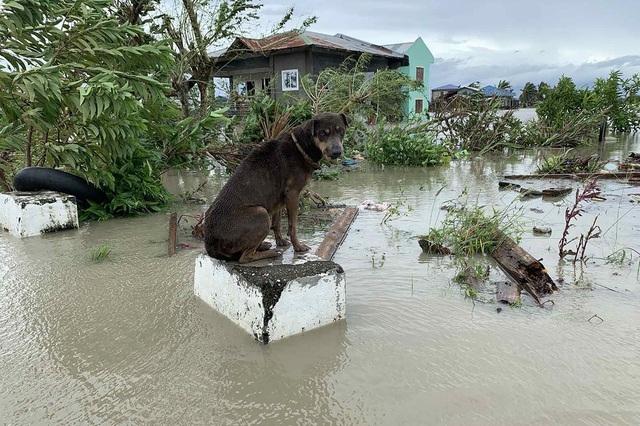 Bão Molave càn quét Philippines, ít nhất 13 người mất tích - 2